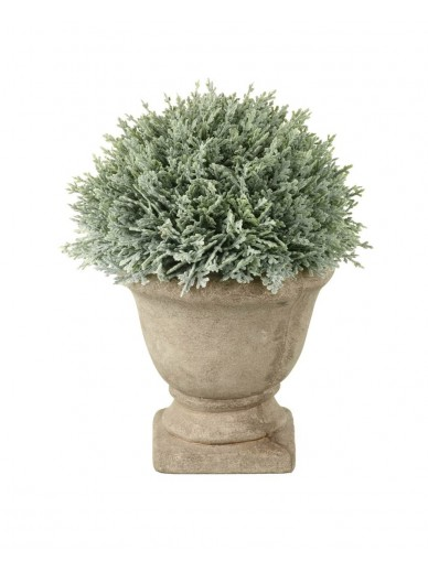 Faux Potted Cypress