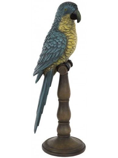 Parrot on Stand