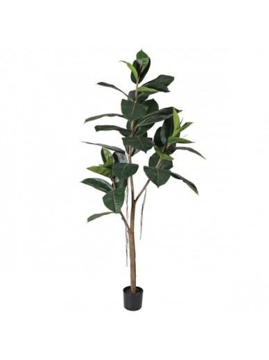 Large Green Faux Rubber Tree