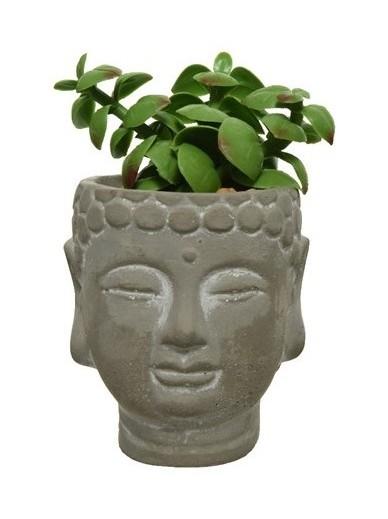Artificial Succulent Buddha Pots A